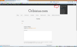 Orbisius Theme Switcher in action